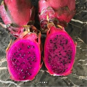 SWEET AND TASTY SUGAR DRAGON FRUIT PLANT CUTTINGS